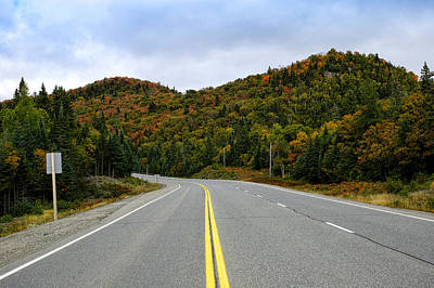 Trans-canada Highway Through Northern Print by Panoramic Images