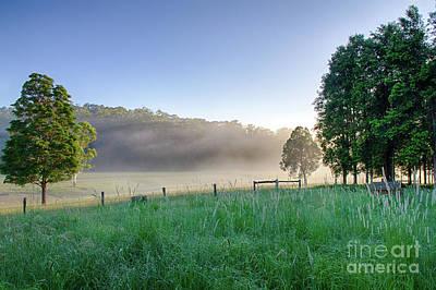 Photograph - Translucent Sunrise by Bryan Freeman