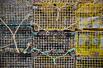Netting Photograph - Traps And Knots by Colleen Kammerer