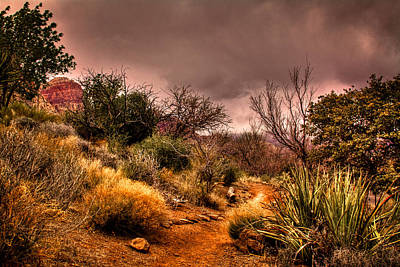 Burro Photograph - Traveling The Trail At Red Rocks Canyon by David Patterson