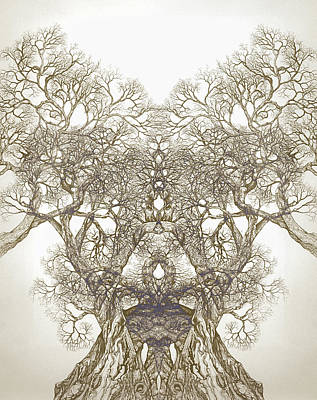 Sepia Ink Drawing - Tree 20 Hybrid 1 by Brian  Kirchner
