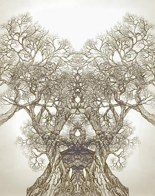 Tree 20 Hybrid 1 Print by Brian  Kirchner