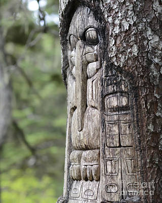 Ancient Photograph - Tree Carved By Native Tlingit Indians Along A Trail On Top Of Mt. Roberts In Juneau, Alaska, Usa.  by Dani Prints and Images