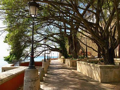 Tree Covered Walkway San Juan Print by George Oze