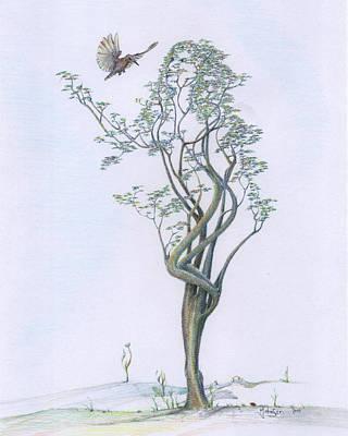 Mark Johnson Drawing - Tree Dancer In Flight Coloured by Mark Johnson