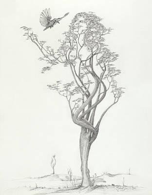 Mark Johnson Drawing - Tree Dancer In Flight by Mark Johnson