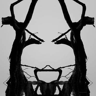 Montage Photograph - Tree Face I Bw Sq by David Gordon