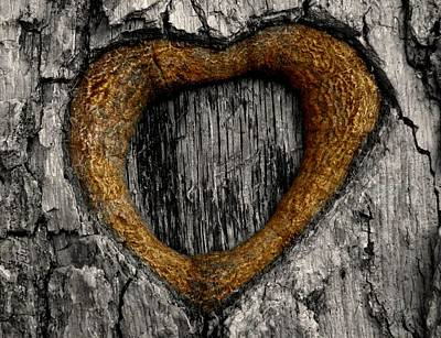 Morphed Photograph - Tree Graffiti Heart by Chris Berry
