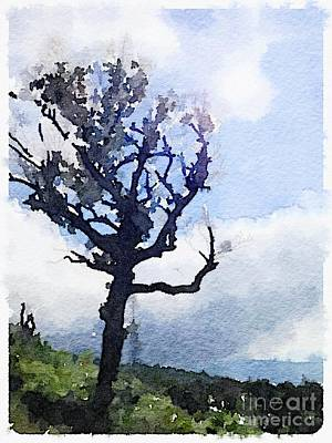 Tree Print by Janet Dodrill