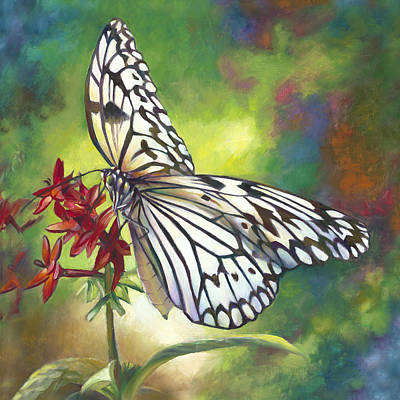 Blue And Red Painting - Tree Nymph Butterfly by Nancy Tilles