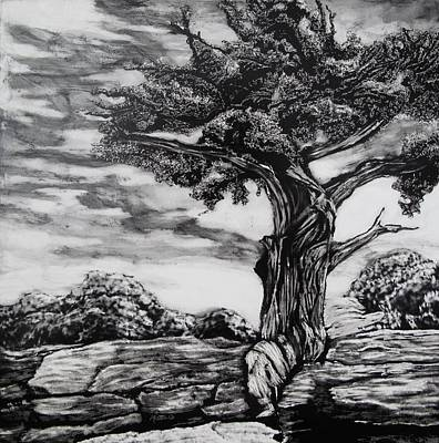 Scratchboard Painting - Tree Portrait No. 5 by Mattie O