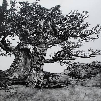 Scratchboard Painting - Tree Portrait No. 7 by Mattie O