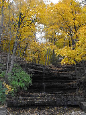Creve Coeur Park Photograph - Tree Surrounded Waterfall by Ginger Repke