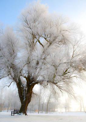 Seagull Digital Art - Tree by Svetlana Sewell