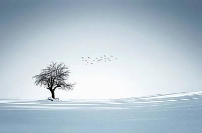 Tree Winter Original by Bess Hamiti