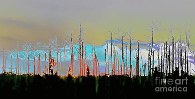 Tree Photograph - Trees After The Fire by Janal Koenig