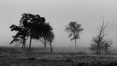 Trees And Foggy Morn Print by James Barber
