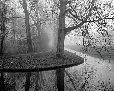 Bare Tree Photograph - Trees In Fog by Copyright Victor Schiferli
