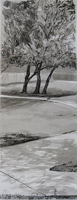 Wash Drawing - Trees In The Park by Karen Boudreaux