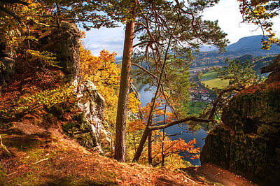 Trees On The Edge. Saxon Switzerland Print by Jenny Rainbow