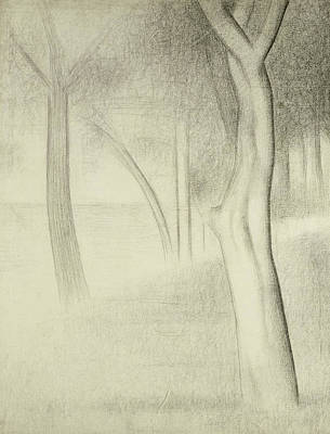 Crayons Tree Drawing - Trees  Study For La Grande Jatte by Georges Pierre Seurat