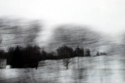 Treescape 2 Print by David Hickey
