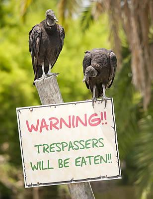 Vulture Photograph - Trespassers Will Be Eaten by Wade Aiken