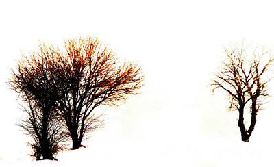 Trio Photograph - Trio by David Bearden