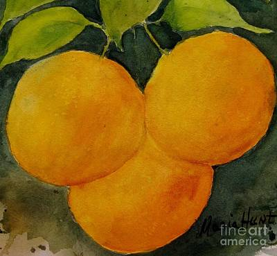Grapefruit Painting - Trois Belle Pampelmousse by Maria Hunt