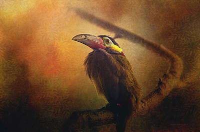 Toucan Digital Art - Tropical Bird by Maria Angelica Maira