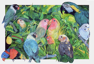 Lovebird Drawing - Tropical Feathers by Dee Van Houten