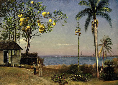 Grapefruit Painting - Tropical Scene by Albert Bierstadt