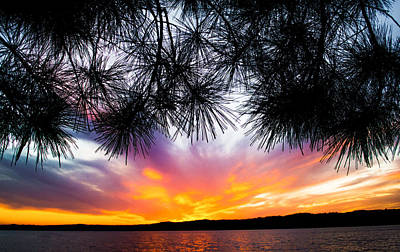 Lake Martin Photograph - Tropical Sunset  by Parker Cunningham