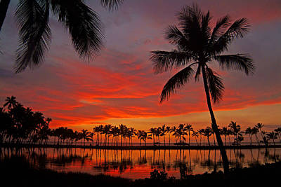 Tropical Sunset Reflections Print by Jennifer Crites