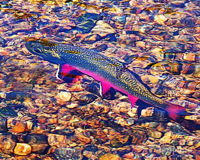 Trout Stream Print by Terril Heilman