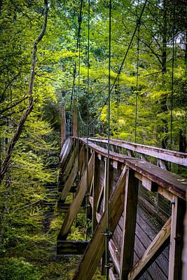Palatka Bridge Photograph - Trusted Suspension by Larry Jones