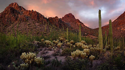 Sonora Photograph - Tucson Mountains Sunset by Dave Dilli