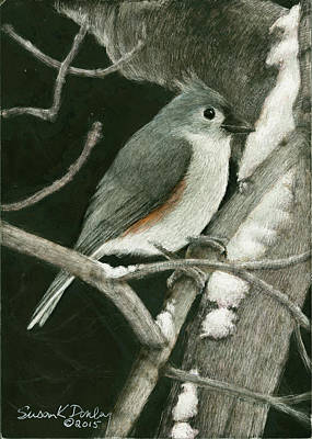 Titmouse Drawing - Tufted Titmouse In The Snow by Susan Donley