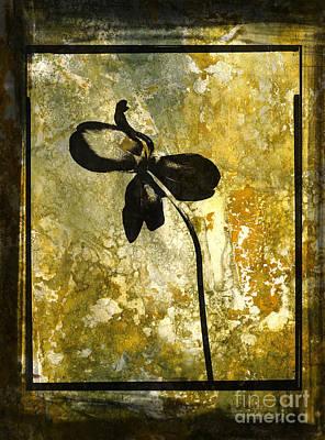 Tulips Digital Art - Tulip by Bernard Jaubert