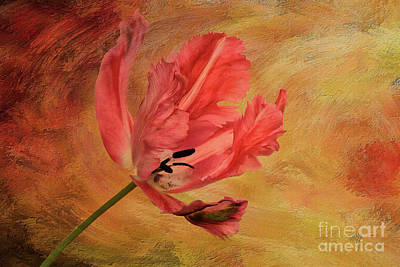 Parrot Digital Art - Tulip In Flames by Lois Bryan