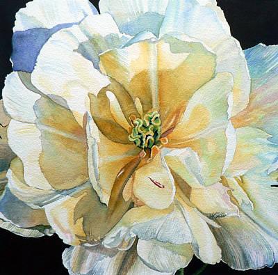 Tulip Intimate Print by Hanne Lore Koehler