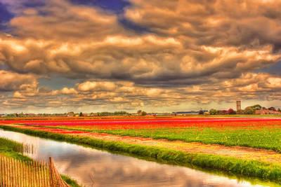 Amsterdam Photograph - Tulip Season by Nadia Sanowar