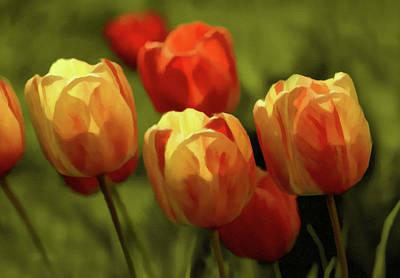 Spring Photograph - Tulip Surprise by Georgiana Romanovna
