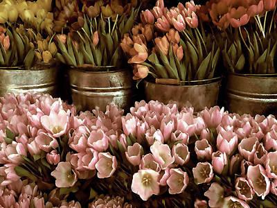 Tulip Digital Art - Tulip Tones by Jessica Jenney