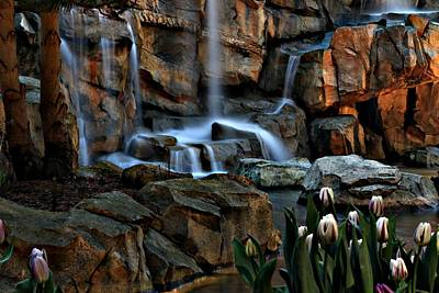Waterfalls Photograph - Tulips Episode 4 by Brad Walters