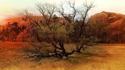 Abstract Photograph - Figgy's Tree Of Life by I E Moon Eagle McClellan