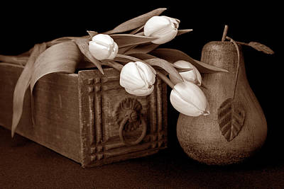 Sepia Flowers Photograph - Tulips With Pear I by Tom Mc Nemar