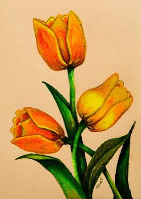 Garden Drawing - Tulips by Zina Stromberg