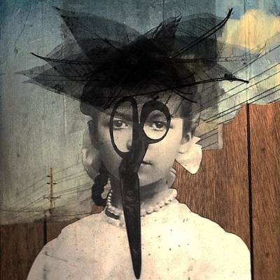 Mixed Media - Tulle by Susan McCarrell