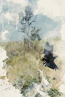 Vulture Mixed Media - Turkey Vulture by Andrew Millar
